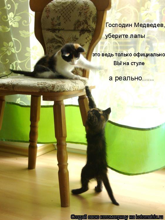 Котоматрица: Господин Медведев, уберите лапы это ведь только официально  ВЫ на стуле а реально......