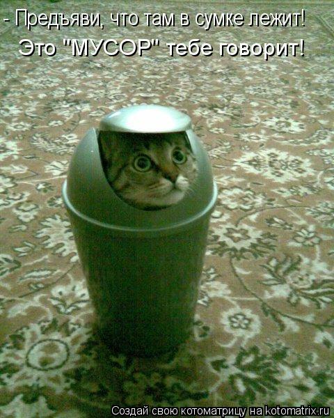 """Котоматрица: - Предъяви, что там в сумке лежит! Это """"МУСОР"""" тебе говорит!"""