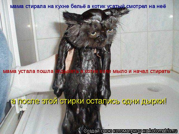 Котоматрица: мама стирала на кухне бельё а котик усатый смотрел на неё мама устала пошла отдыхать а котик взял мыло и начал стирать мама устала пошла отд