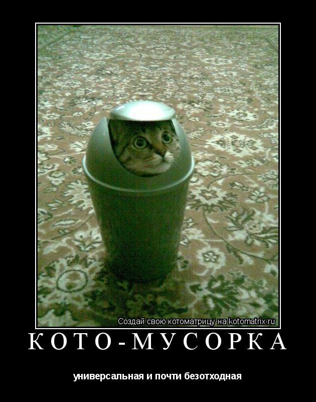 Котоматрица: кото-мусорка универсальная и почти безотходная