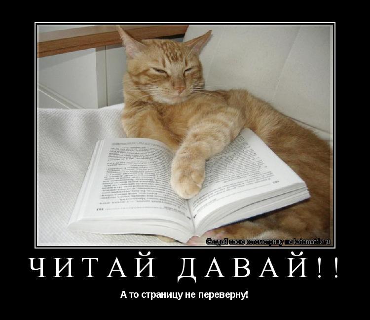 Котоматрица: Читай давай!! А то страницу не переверну!