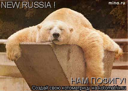 Котоматрица: NEW RUSSIA ! НАМ ПОФИГУ!