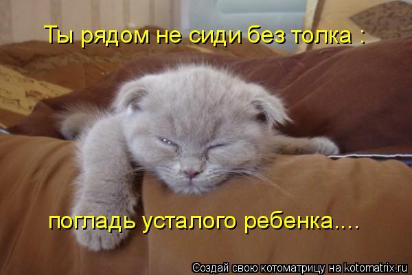 Котоматриця!)))) - Страница 4 478817