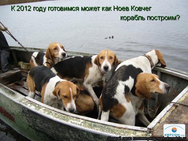 Котоматрица: К 2012 году готовимся может как Ноев Ковчег корабль построим?
