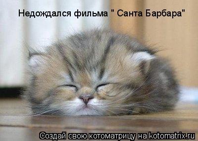 """Котоматрица: Недождался фильма """" Санта Барбара"""""""