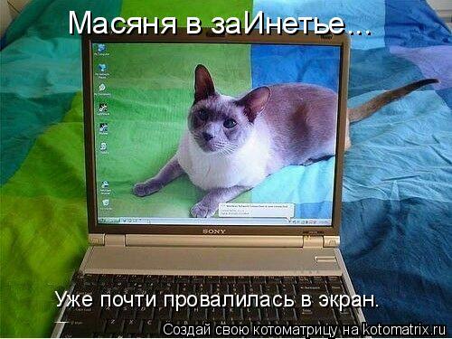 Котоматрица: Масяня в заИнетье... Уже почти провалилась в экран.