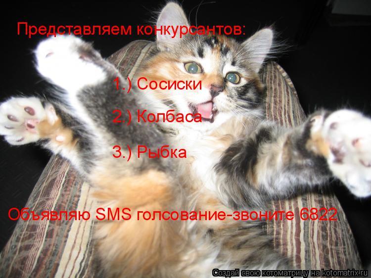 Котоматрица: Представляем конкурсантов: 1.) Сосиски 2.) Колбаса 3.) Рыбка Объявляю SMS голсование-звоните 6822