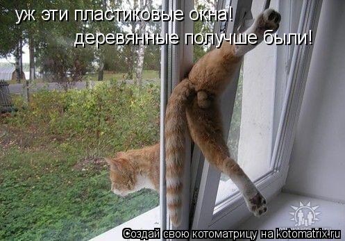 Котоматрица: уж эти пластиковые окна! деревянные получше были!