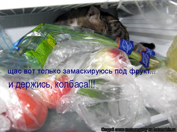 Котоматрица: щас вот только замаскируюсь под фрукт... и держись, колбаса!!!
