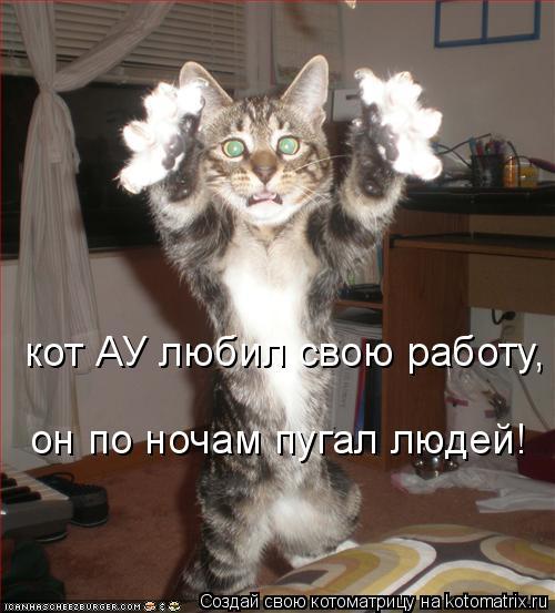 Котоматрица: кот АУ любил свою работу, он по ночам пугал людей!