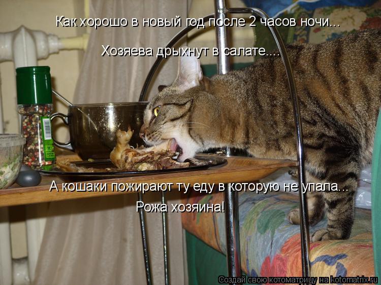 Котоматрица: Как хорошо в новый год после 2 часов ночи... Хозяева дрыхнут в салате.... А кошаки пожирают ту еду в которую не упала... Рожа хозяина!