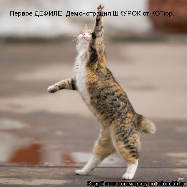 Первое ДЕФИЛЕ. Демонстрация ШКУРОК от КОТюр.