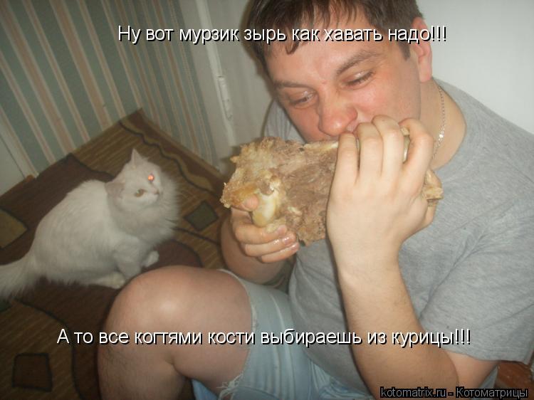 Котоматрица: Ну вот мурзик зырь как хавать надо!!! А то все когтями кости выбираешь из курицы!!!