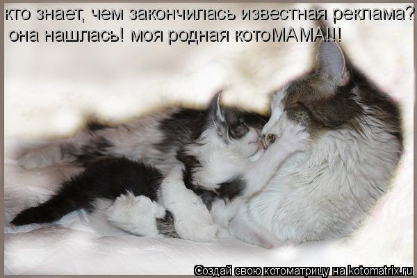 Котоматрица: кто знает, чем закончилась известная реклама? она нашлась! моя родная котоМАМА!!!