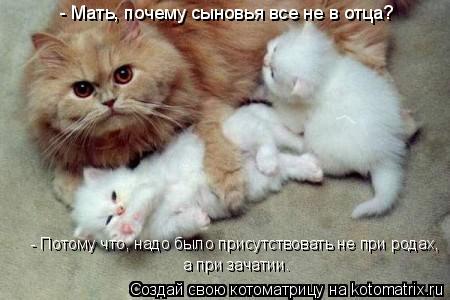 Котоматрица: - Мать, почему сыновья все не в отца? - Потому что, надо было присутствовать не при родах, а при зачатии.