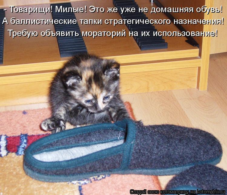 Котоматрица: - Товарищи! Милые! Это же уже не домашняя обувь! А баллистические тапки стратегического назначения! Требую объявить мораторий на их использ