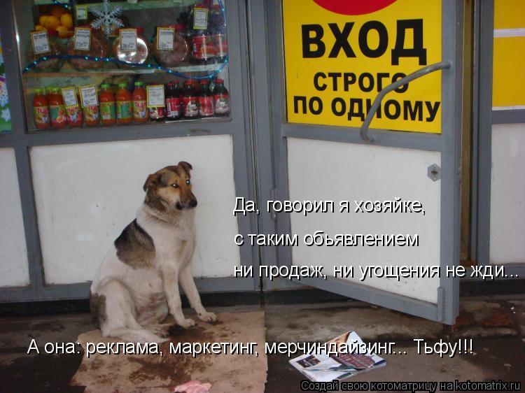 Котоматрица: ни продаж, ни угощения не жди... с таким обьявлением Да, говорил я хозяйке, А она: реклама, маркетинг, мерчиндайзинг... Тьфу!!!