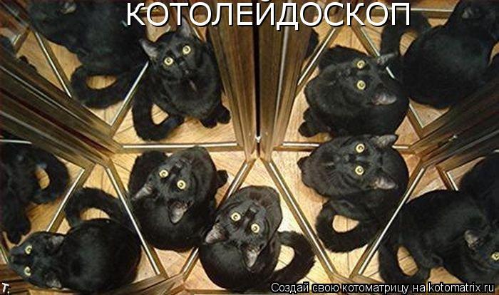 Котоматрица: КОТОЛЕЙДОСКОП