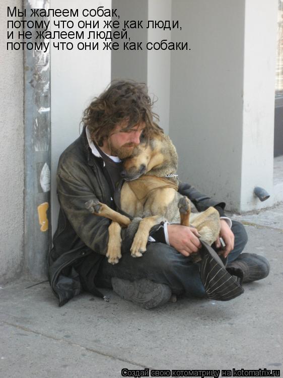 Котоматрица: Мы жалеем собак, потому что они же как люди, и не жалеем людей, потому что они же как собаки.