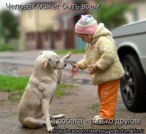 Котоматрица: Человек может быть всем,  а собака - только другом.