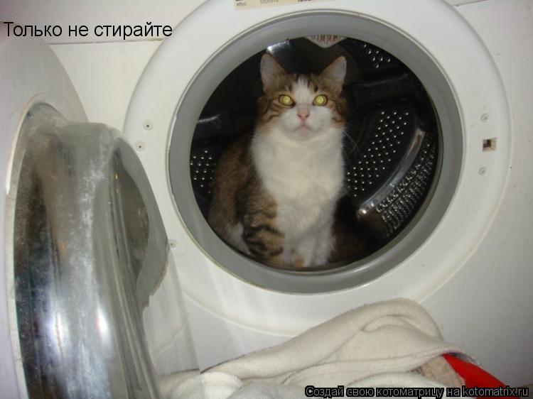 Котоматрица: Только не стирайте
