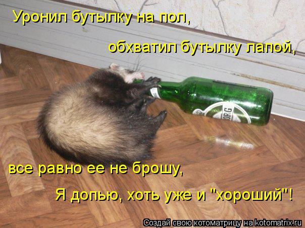 """Котоматрица: Уронил бутылку на пол, обхватил бутылку лапой, все равно ее не брошу, Я допью, хоть уже и """"хороший""""!"""