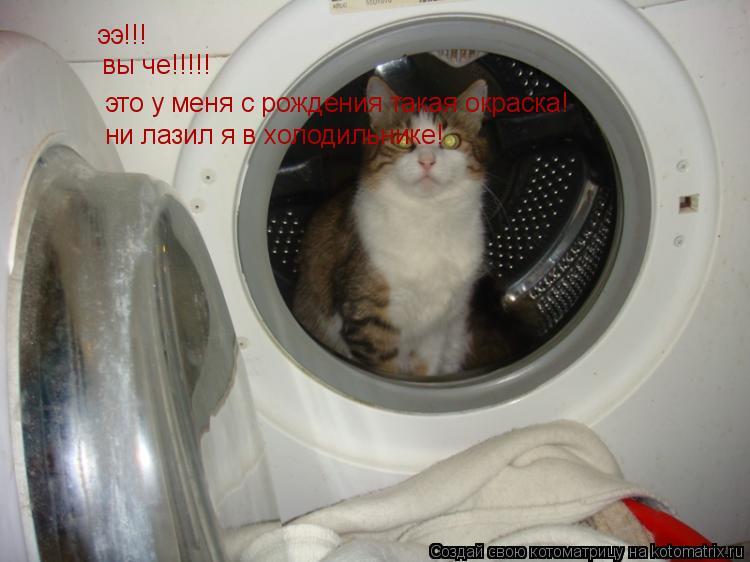 Котоматрица: ээ!!! вы че!!!!! это у меня с рождения такая окраска! ни лазил я в холодильнике!