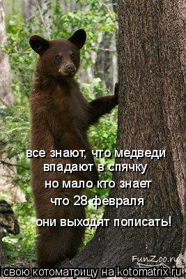 Котоматрица: все знают, что медведи впадают в спячку но мало кто знает что 28 февраля они выходят пописать!