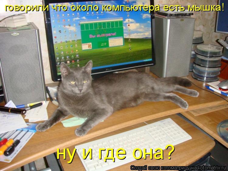 Котоматрица: говорили что около компьютера есть мышка! ну и где она?
