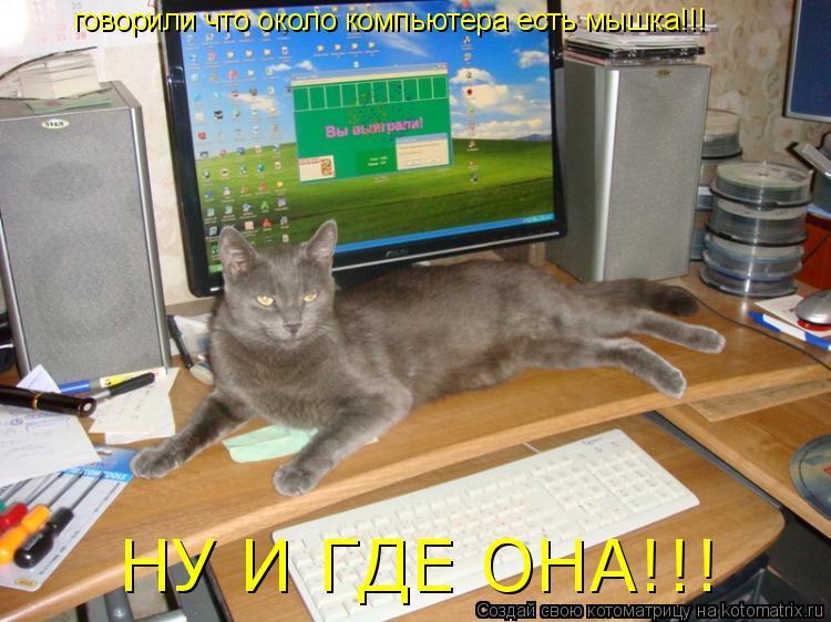 Котоматрица: говорили что около компьютера есть мышка!!! НУ И ГДЕ ОНА!!!
