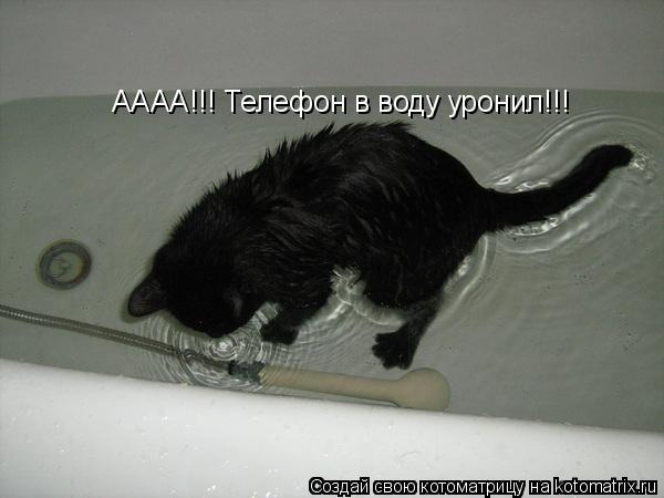 Котоматрица: АААА!!! Телефон в воду уронил!!!