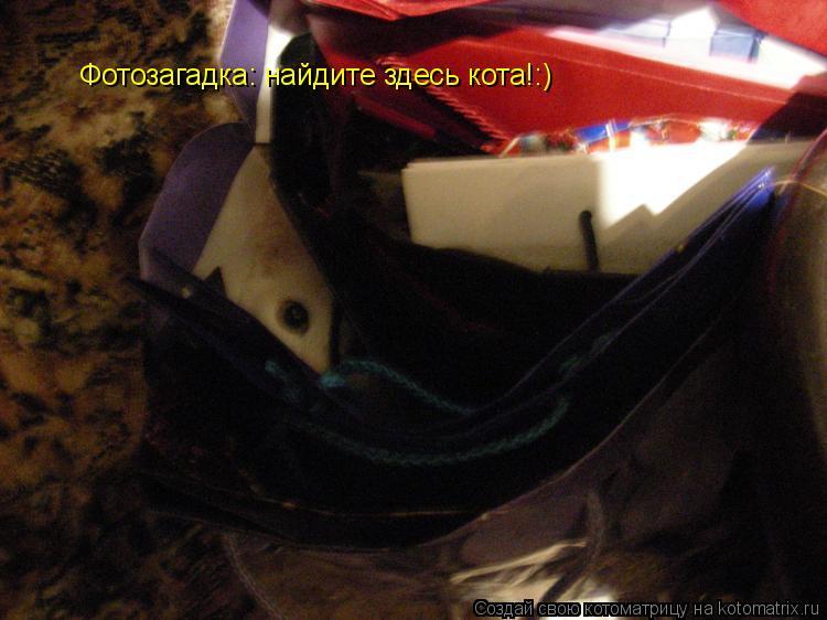 Котоматрица: Фотозагадка: найдите здесь кота!:)