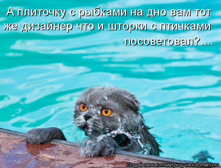 Котоматрица: А плиточку с рыбками на дно вам тот  же дизайнер что и шторки с птичками  посоветовал?....