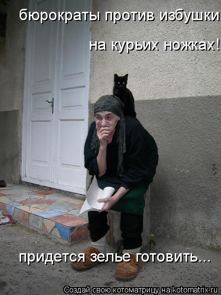 Котоматрица: бюрократы против избушки на курьих ножках!  на курьих ножках! придется зелье готовить...