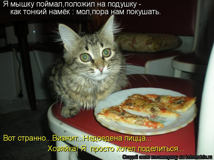 Котоматрица: Я мышку поймал,положил на подушку - как тонкий намёк : мол,пора нам покушать. Вот странно...Визжит...Недоедена пицца... Хозяйка! Я  просто хотел