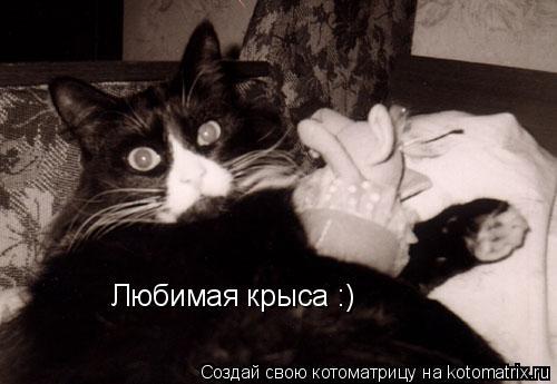 Котоматрица: Любимая крыса :)