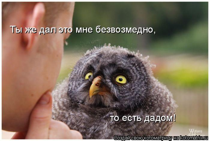 Котоматрица: Ты же дал это мне безвозмедно, то есть дадом!