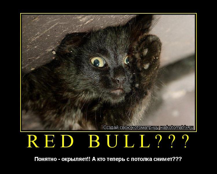 Котоматрица: Red Bull??? Понятно - окрыляет!! А кто теперь с потолка снимет???