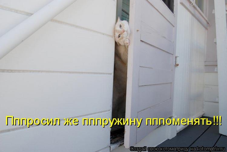 Котоматрица: Пппросил же пппружину пппоменять!!!