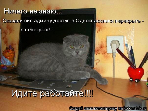 Котоматрица: Ничего не знаю... Сказали сис.админу доступ в Одноклассники перекрыть -  я перекрыл!! Идите работайте!!!!