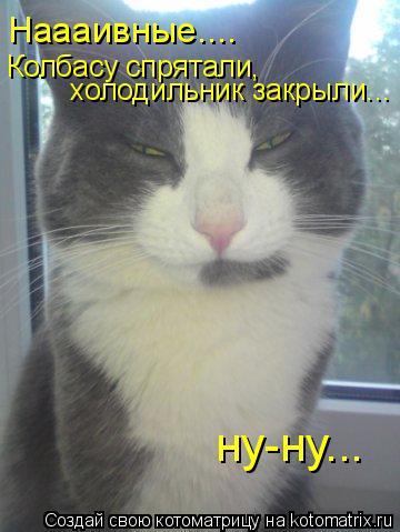 Котоматрица: Наааивные.... Колбасу спрятали,  холодильник закрыли... ну-ну...