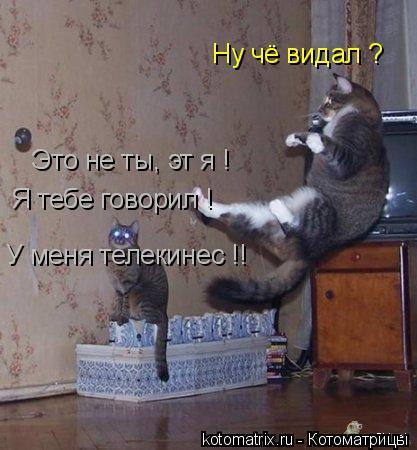 Котоматрица: Ну чё видал ? Это не ты, эт я !  Я тебе говорил !  У меня телекинес !!