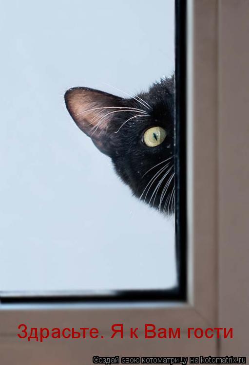Котоматрица: Здрасьте. Я к Вам гости