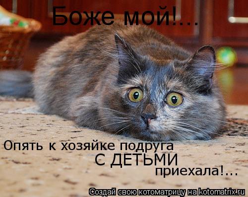 Котоматрица: Боже мой!... Опять к хозяйке подруга  С ДЕТЬМИ приехала!...