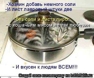 Котоматрица: -Хозяин добавь немного соли -И лист лавровый штуки две -без соли и листа,пирог - с кошачьим мясом,не так любезин - И вкусен к людям ВСЕМ!!!