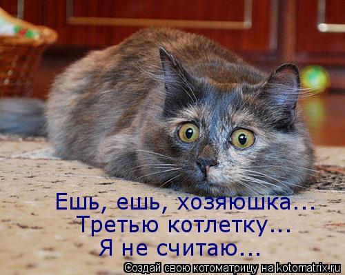 Котоматрица: Ешь, ешь, хозяюшка... Третью котлетку... Я не считаю...