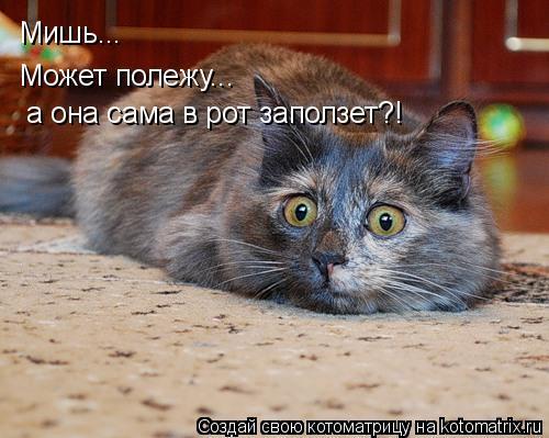 Котоматрица: Мишь... Может полежу...  а она сама в рот заползет?!