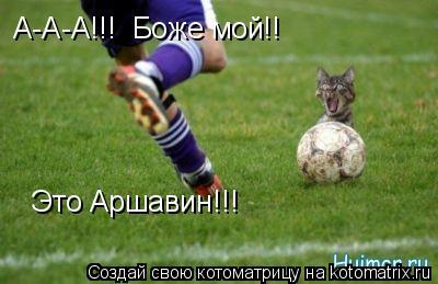 Котоматрица: А-А-А!!!  Боже мой!! Это Аршавин!!!