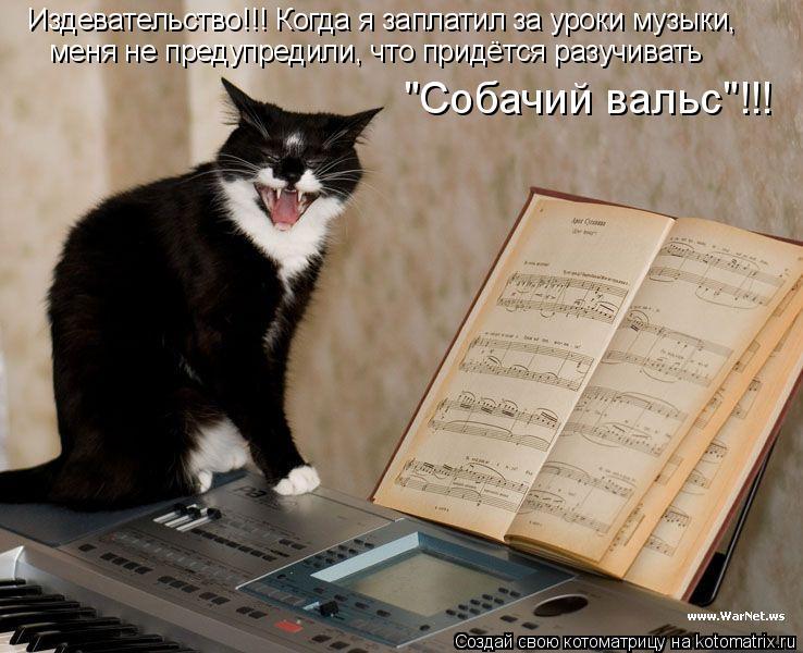 """Котоматрица: Издевательство!!! Когда я заплатил за уроки музыки,  меня не предупредили, что придётся разучивать  """"Собачий вальс""""!!!"""