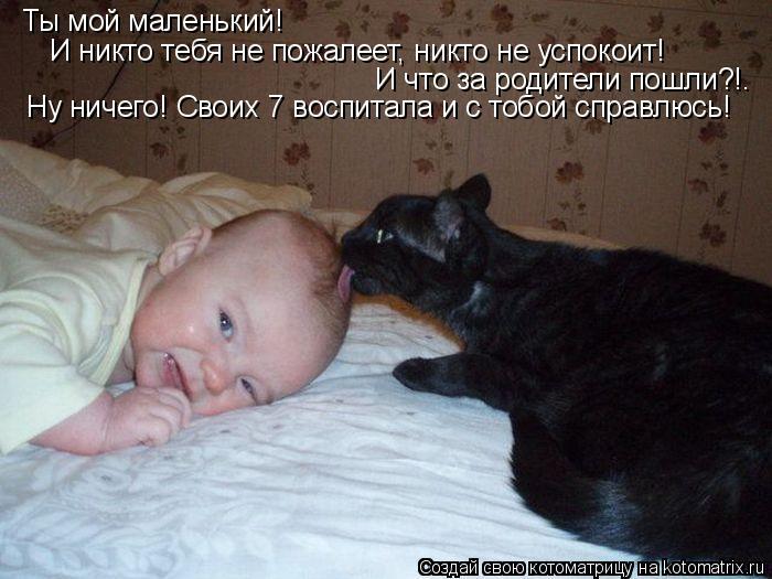 Котоматрица: Ты мой маленький! И никто тебя не пожалеет, никто не успокоит! И никто тебя не пожалеет, никто не успокоит! И что за родители пошли?!. Ну ничего